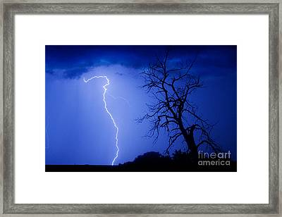 Lightning Tree Silhouette Framed Print