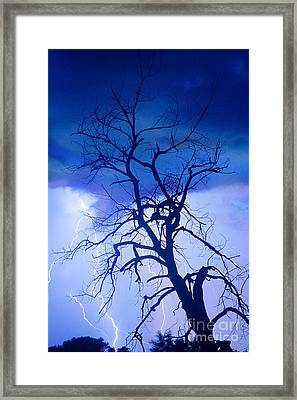 Lightning Tree Silhouette Portrait Framed Print