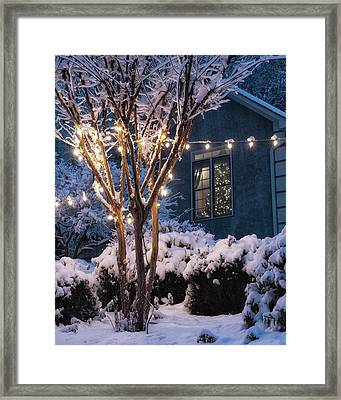Lights And A Tree Framed Print