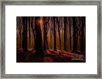 Lights And Shadows Framed Print