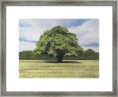 Like A Tree Framed Print by Hannah Harris