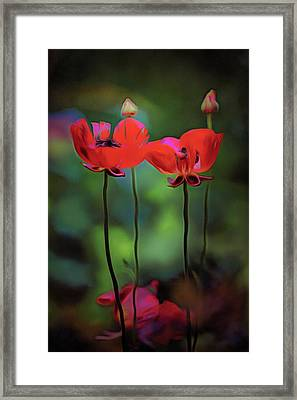 Like Anything Else, This Too Shall Pass.... Framed Print
