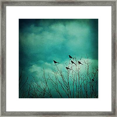 Framed Print featuring the photograph Like Birds On Trees by Trish Mistric