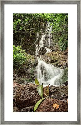 Framed Print featuring the photograph Likeke by Heather Applegate