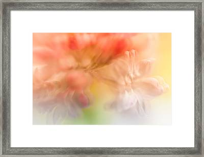 Lilac Floral Abstract 1. Watercolors Series Framed Print by Jenny Rainbow