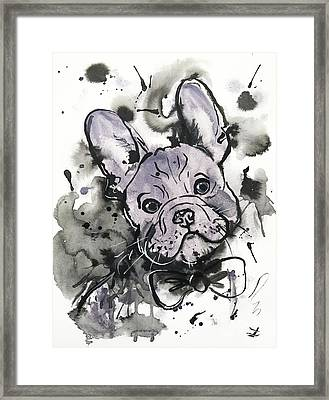 Lilac Frenchie Framed Print