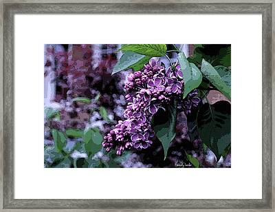 Lilac Heaven Framed Print