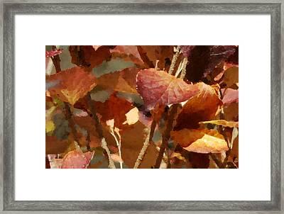 Lilac Leaves 36 Framed Print