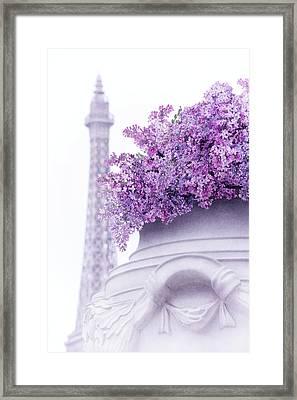 Lilac Tales Framed Print by Iryna Goodall