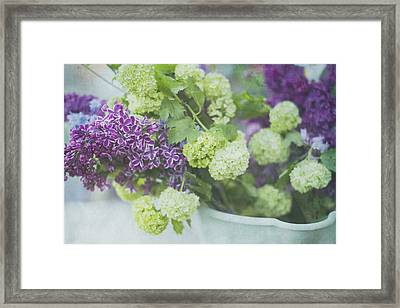 Lilacs And Snowballs Framed Print by Rebecca Cozart