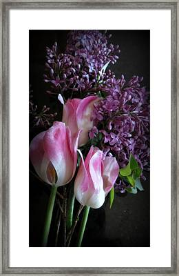 Lilacs  And Tulips Framed Print
