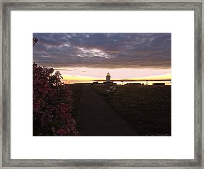 Lilacs At Portland Breakwater Light Framed Print