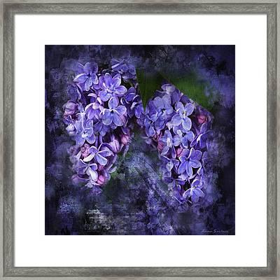 Lilacs Frenchy Scruff Framed Print
