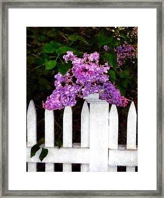Lilacs - Mother's Day 1 Framed Print by Janine Riley
