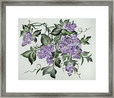 Lilac's Splendor Framed Print by Patty Muchka