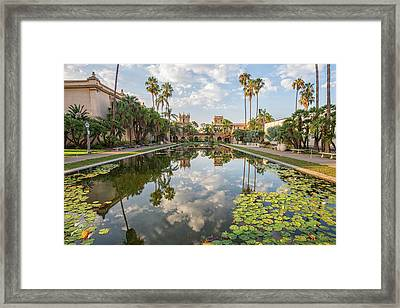 Lilies And Clouds Framed Print