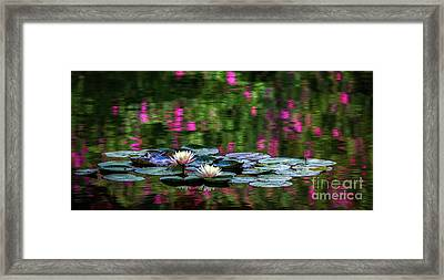 Lilies And Crape Myrtle Framed Print