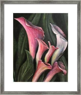 Lilies Calla Oil Painting Framed Print by Natalja Picugina