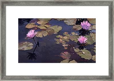 Lilies II - Water Lilies Framed Print
