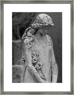 Lilies Of Peace Framed Print
