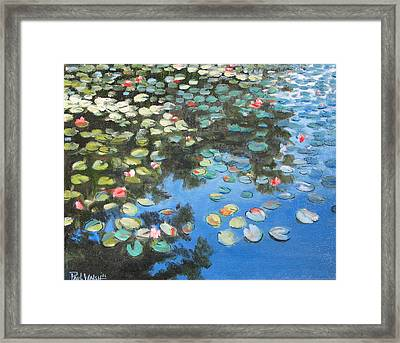 Lilies Framed Print by Paul Walsh