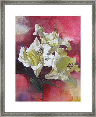 Lilies With Red Framed Print by Alfred Ng