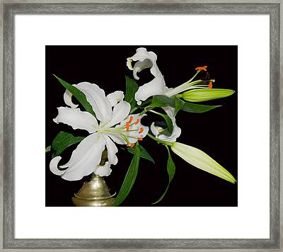 Lilies And Old Brass Framed Print by Dave Byrne