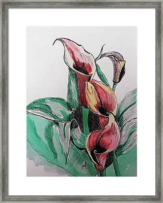 Lillie Framed Print by Maria Woithofer
