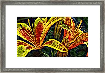 Lilly Fire Framed Print