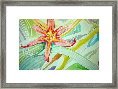 Lilly  Framed Print by Jame Hayes