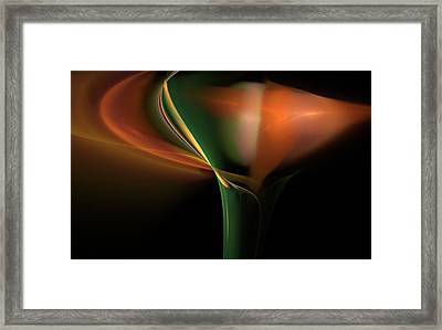 Lilly Of Light Framed Print