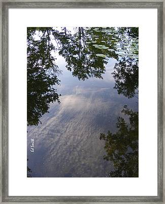 Lilly Pad Reflections Framed Print by Ed Smith