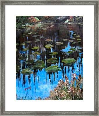 Lilly Pads And Reflections Framed Print