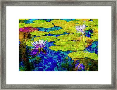 Framed Print featuring the photograph Lilly by Paul Wear