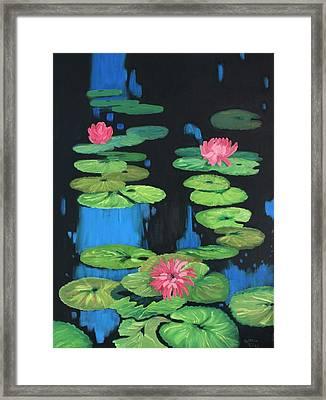 Lilly Pond Framed Print by Cynthia Riley