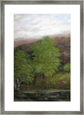Lilly Pond  Framed Print by Marcia Crispino
