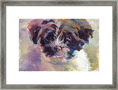 Lilly Pup Framed Print by Kimberly Santini