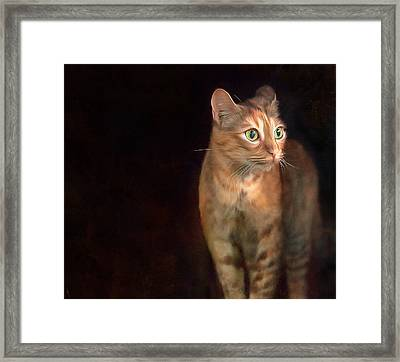 Lilly Standing At The Door Framed Print by Hazel Billingsley