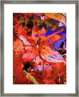 Lily Cobalt Orange Framed Print