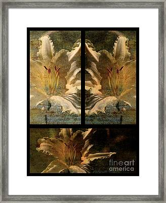 Lily Collage Framed Print by Lois Bryan