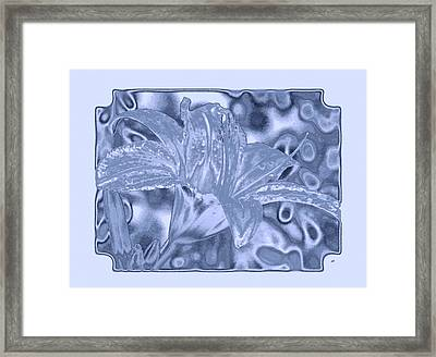 Lily Elegance 1 Framed Print by Will Borden