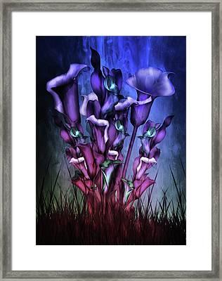 Lily Fantasy By Night Framed Print
