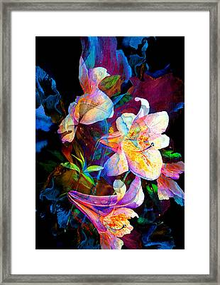 Lily Fiesta Garden Framed Print by Hanne Lore Koehler