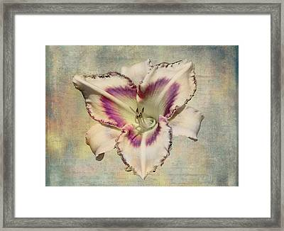 Lily For A Day Framed Print by Angela A Stanton