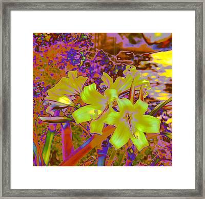 Lily Glow Yellow Framed Print by M Diane Bonaparte