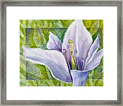 Lily In Purple Framed Print