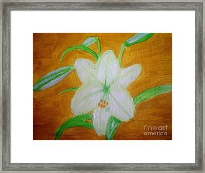 Lily Of Ecuador Framed Print