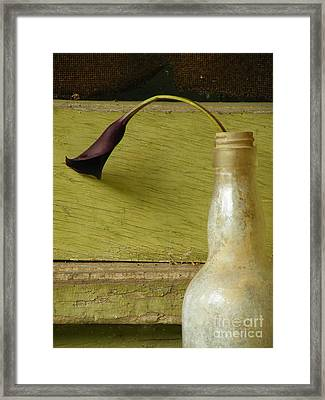 Lily Of The Bottle Framed Print by Joe Jake Pratt