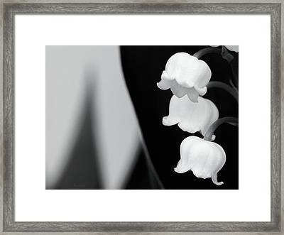 Lily Of The Valley Abstract Framed Print by Wim Lanclus