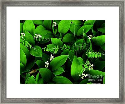 Lily Of The Valley Framed Print by Elfriede Fulda
